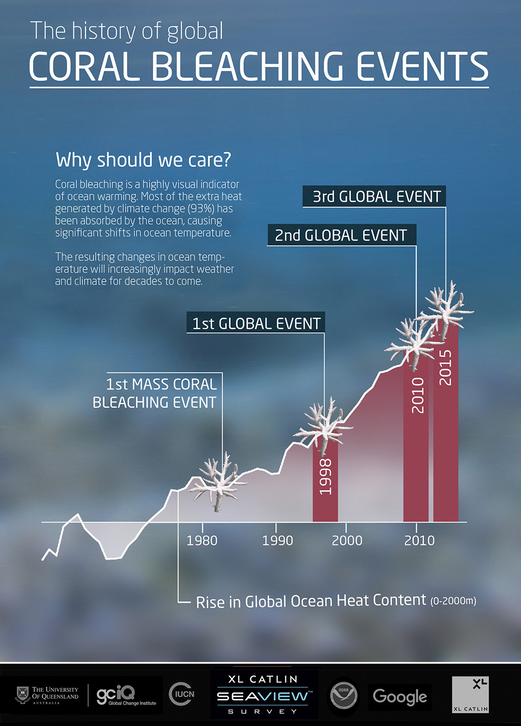 coral-Infographic-2